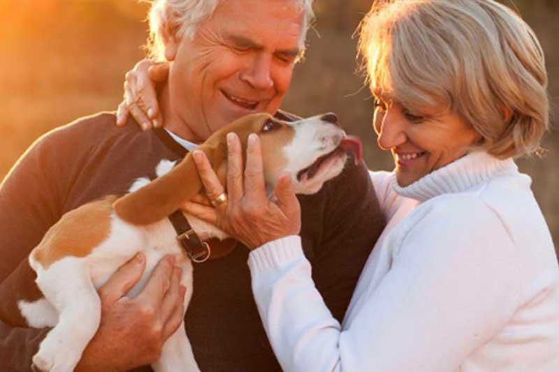 Werden Sie Eigentümer eines Pflegeapartments | Konzept